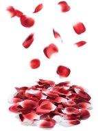 Zábavné doplňky a vychytávky do domácnosti: Romantické okvětní lístky růží