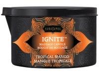 Svíčky s masážními oleji: Masážní olejová svíčka Ignite Tropical Mango